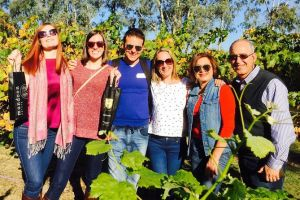 Swan Valley Tour from Perth Wine Beer and Chocolate Tastings - Find Attractions